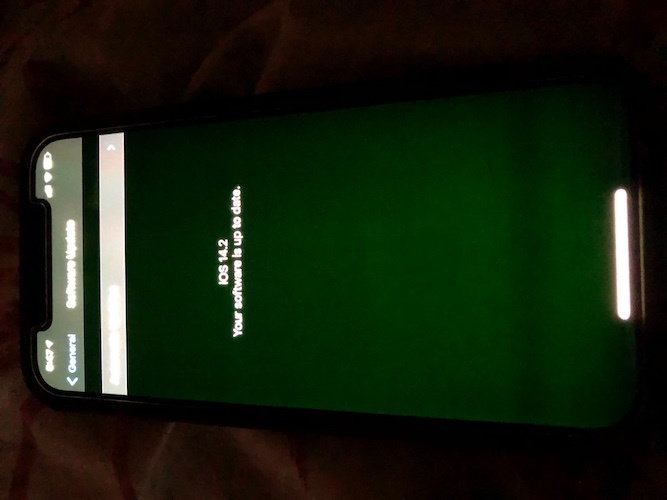 iphone 12 green glow 1