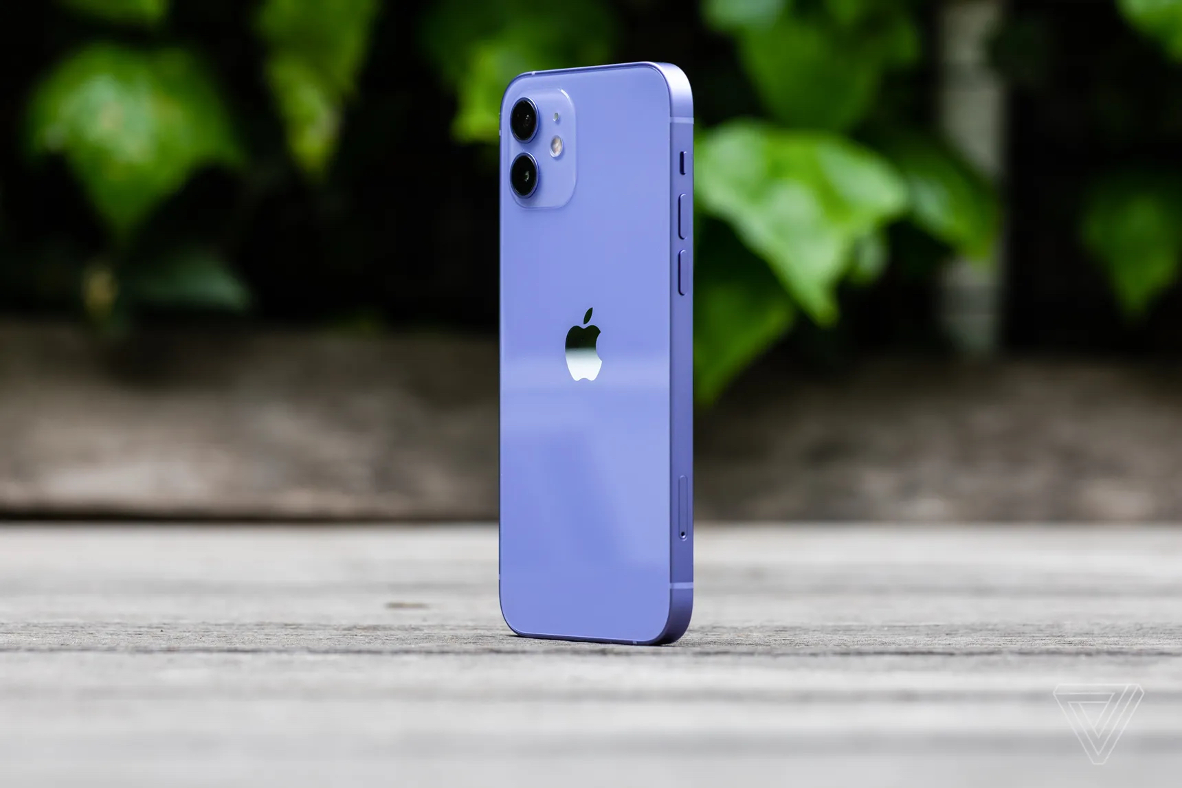 iphone 12 purple verge