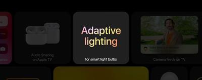 adapptive Lightning feature