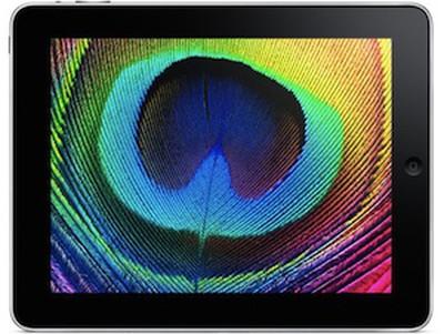 095750 ipad display 300