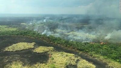 amazonrainforestfire