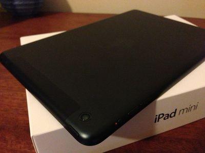 ipad mini lte delivered