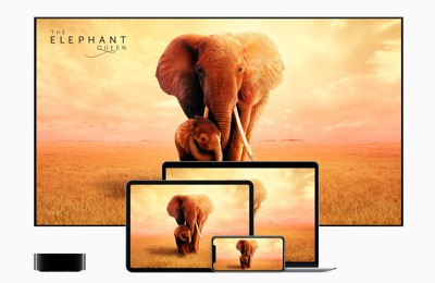 apple tvplus now available the elephant queen 11119