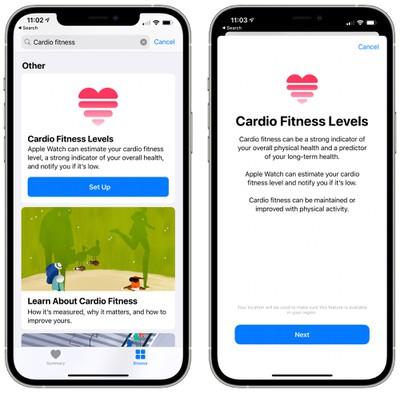 cardio fitness levels setup
