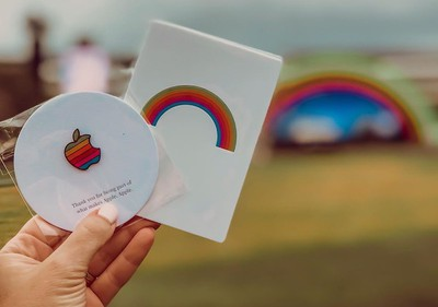 apple rainbow pin