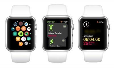 segments in an apple watch workout