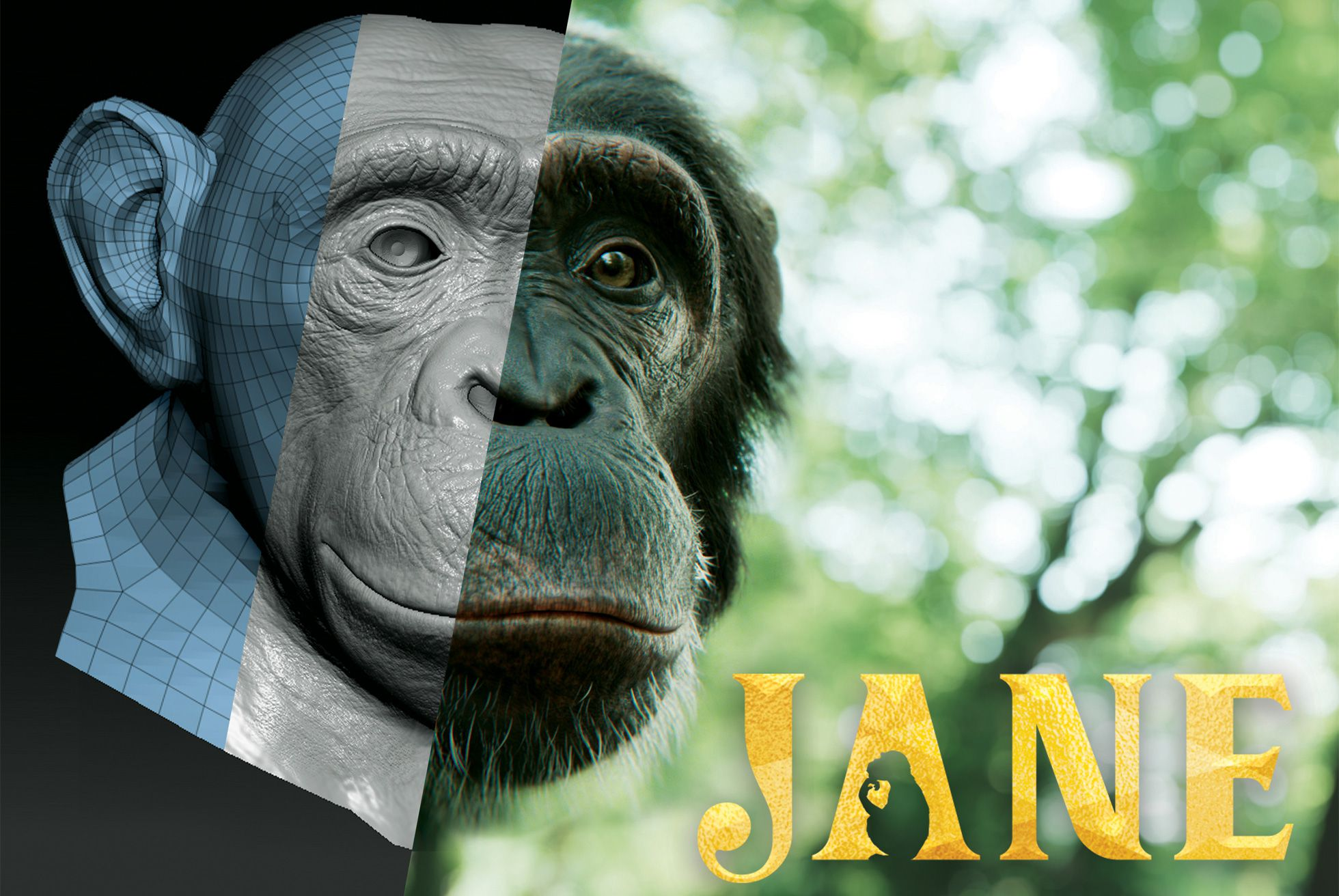 Apple TV+ Getting Family-Friendly Series Inspired by Dr. Jane Goodall