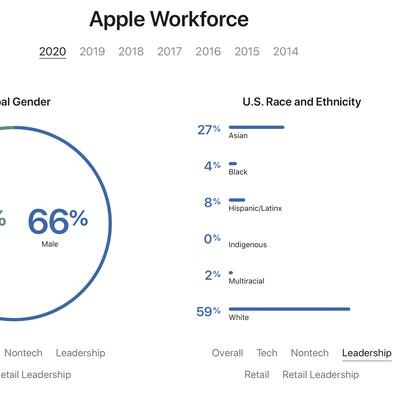 2020 diversity stats