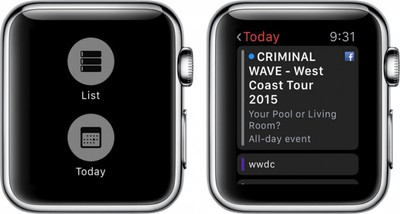 Apple Watch Calendar 3