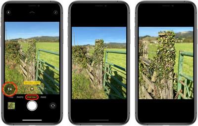 portrait mode iphone 11 pro