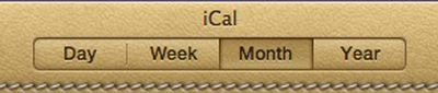 163551 lion ical button style selector