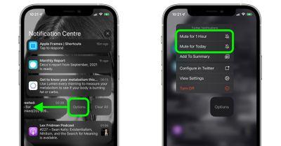 mute app notifications
