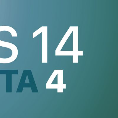 iOS 14 Beta 4 Feature