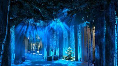Ive Christmas tree
