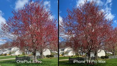oneplus 8 pro iphone trees