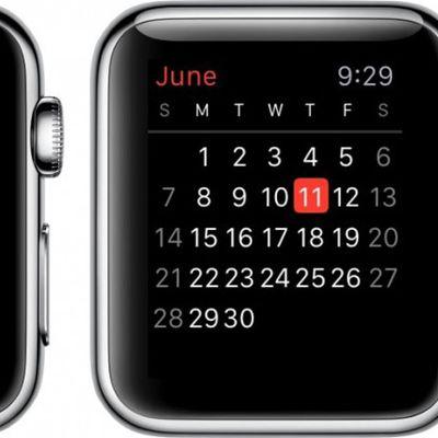 Apple Watch Calendar 1