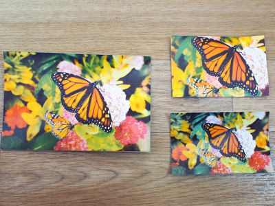 butterflypryntcomparison
