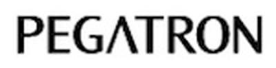 161307 pegatron wordmark