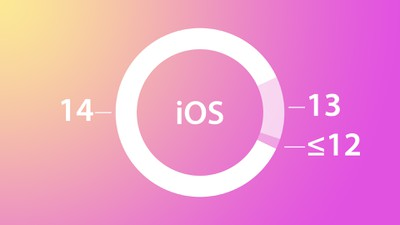 iOS 14 February Adoption Feature