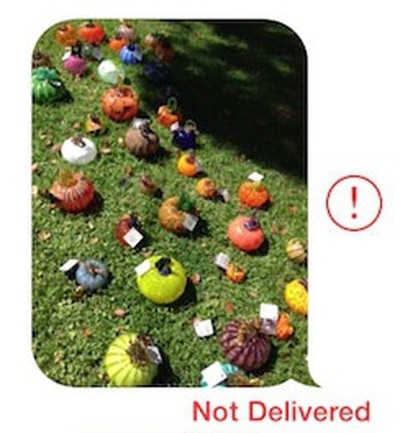 imessage_not_delivered_crop