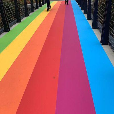 rainbow walkway apple