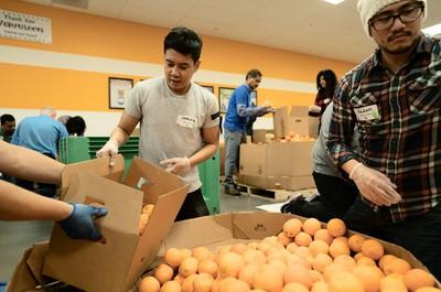 apple volunteers second harvest