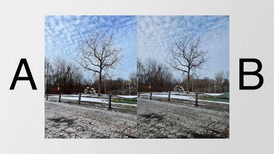 s21 vs iphone 12 landscape