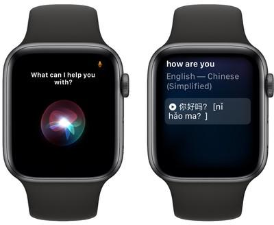 Apple Watch SE: Work With Apple Siri, Translator & Apple Pay