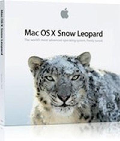 115128 snow leopard box
