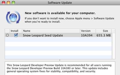191247 snow leopard 10a394