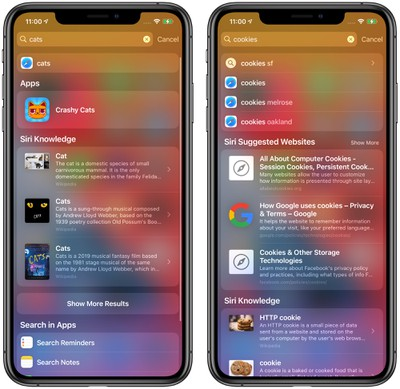 ios14search