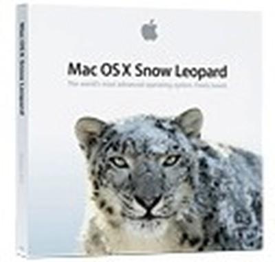 171406 snow leopard box