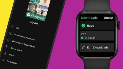spotify offline playback apple watch