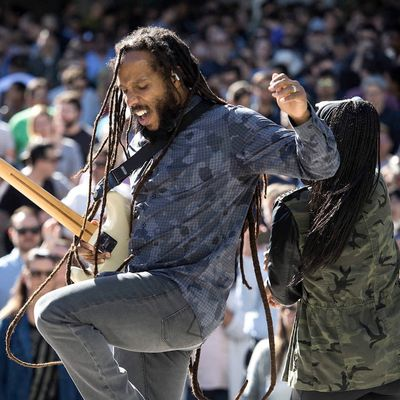 ziggy marley apple beer bash