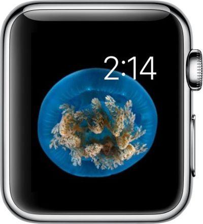 Watch Face on Apple Watch