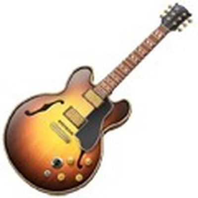 220109 garageband mac icon