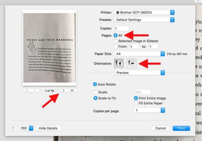4 print options to pdf