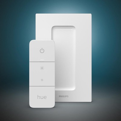 2021 hue switch