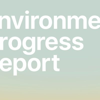 environmental progress report 2021