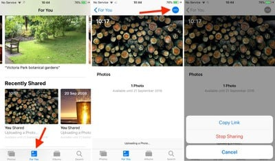 how to share an icloud photo link in ios 12 03