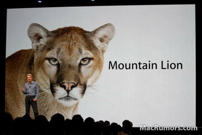 mountainlion560