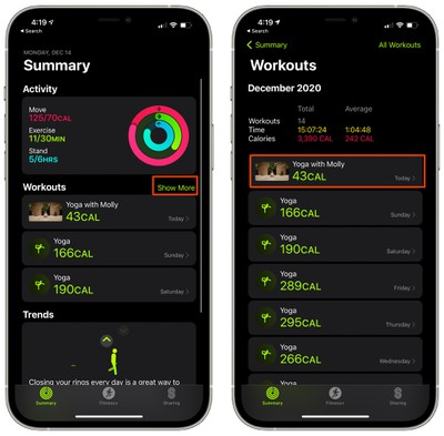 apple fitness plus view summary