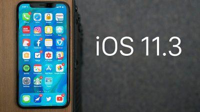 ios113