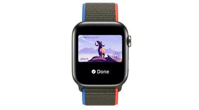 apple watch drivers license id card watchos 8