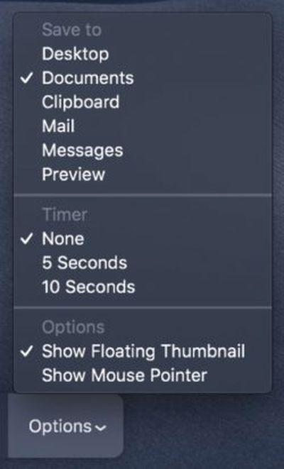 mojave screenshot options