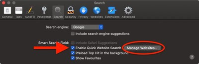 how to perform a quick website search in safari 4
