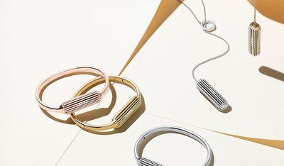 fitbit flex 2 accessories