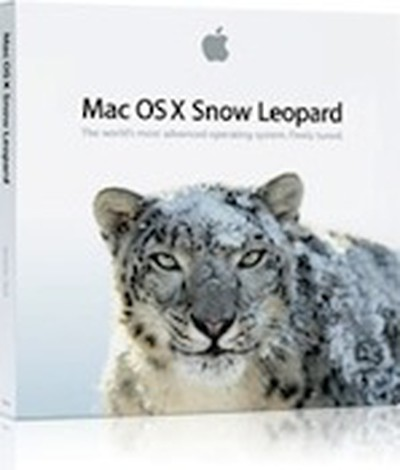 161301 snow leopard box