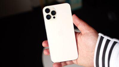 iphone 12 mini in hand 1