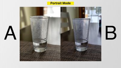 s21 vs iphone 12 portrait 2